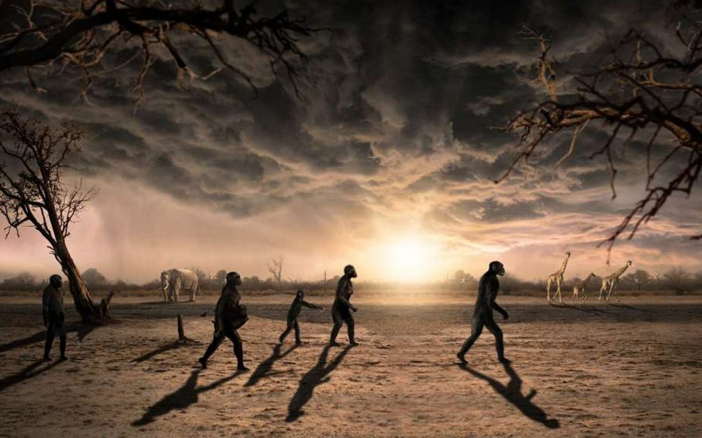 la marche des Australopithèques dans la savane - photo Futura Sciences