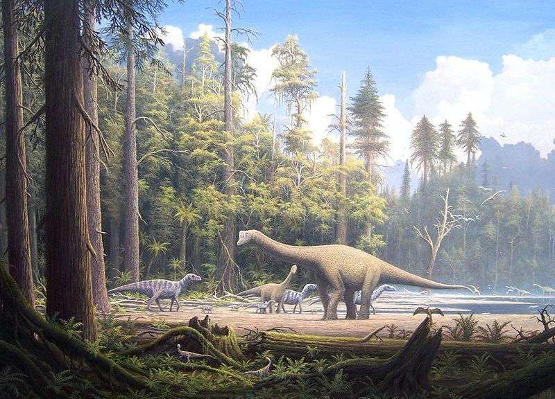 Origines de l'Humanité préhistoire