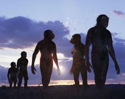 la longue évolution de l'homme