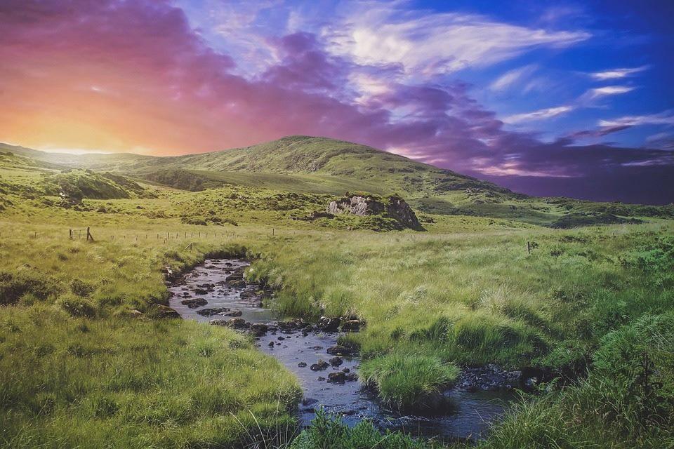 Moorlands Ecosse