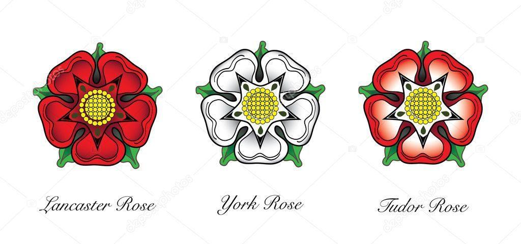 Les roses blanches et rouges des York - Lancastre et Tudor