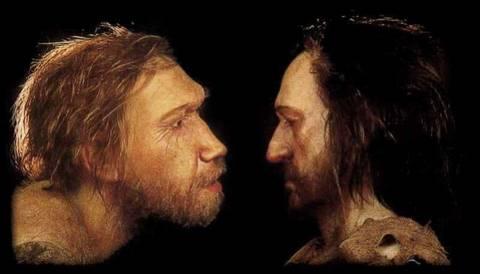 cro magnon neandertal