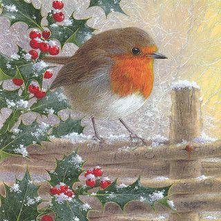 Noel rouge gorge